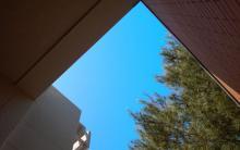 Bajo el cielo azul